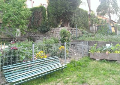 Jardin partagé à la Bibliothèque